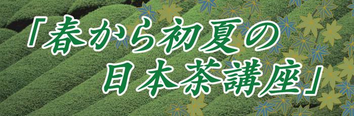 春から初夏の日本茶講座
