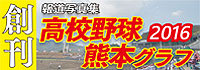 全国高等学校野球選手権熊本大会 グラフ